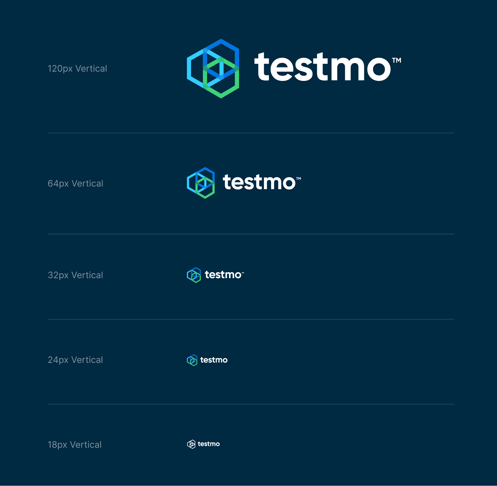 Logo variations and responsive designs from brand Testmo.