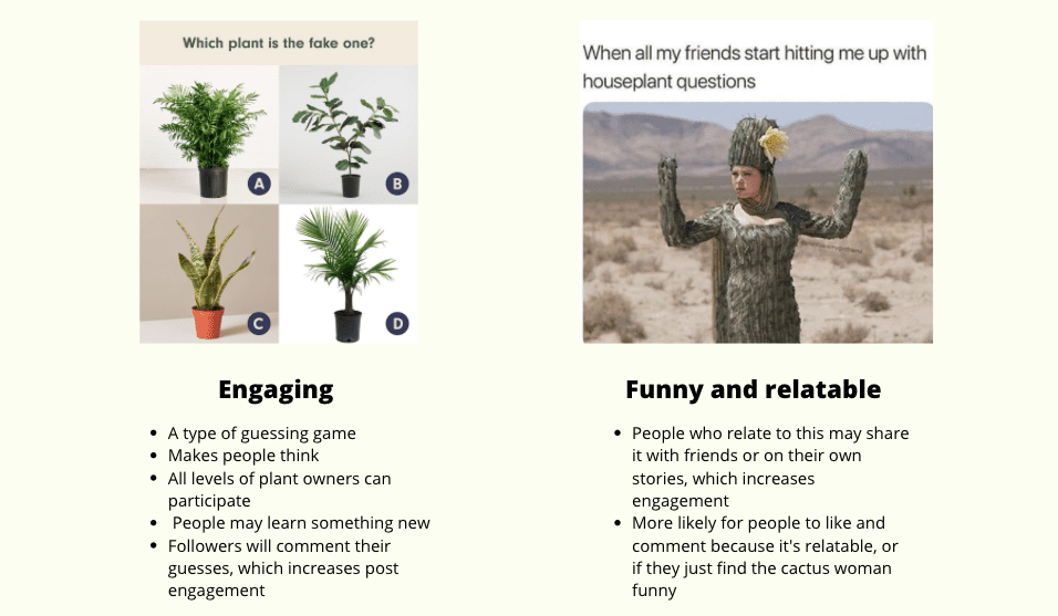 Comparing content types for houseplant businesses social media