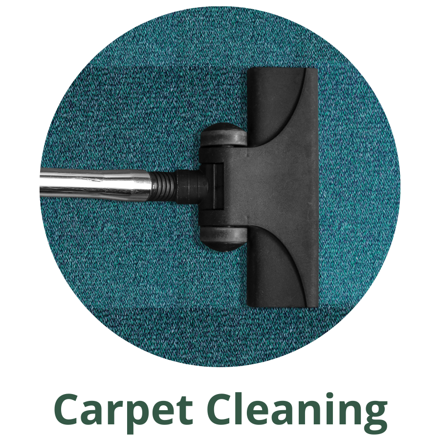 blue carpet being cleaned by blak and silver vaccume