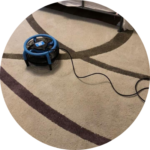 brown carpet with fan on top