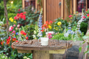 Spring cleaning your garden in your backyard.